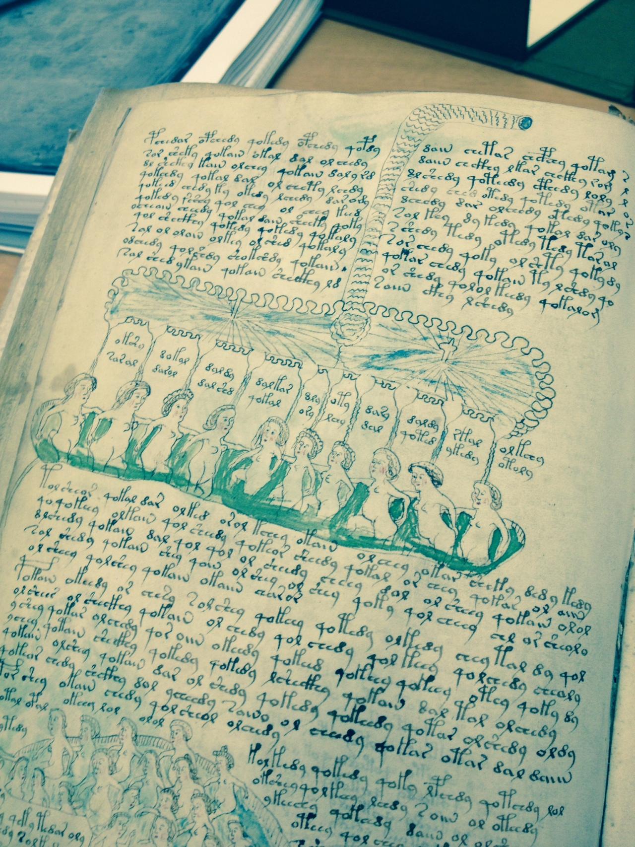 Illustration from the Voynich Manuscript photo by Hillary Raimo Yale University