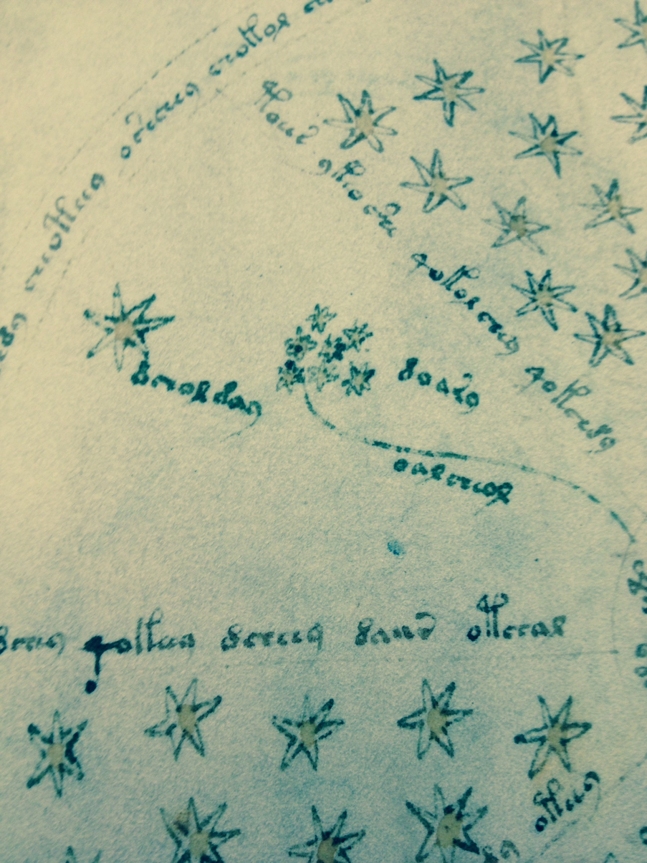 7 Sisters Constellation as found in the Voynich manuscript. Photo by Hillary Raimo Yale University 11/19/2013